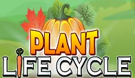 PlantLifeCycle