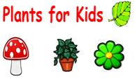 wc-plants4kids.fw