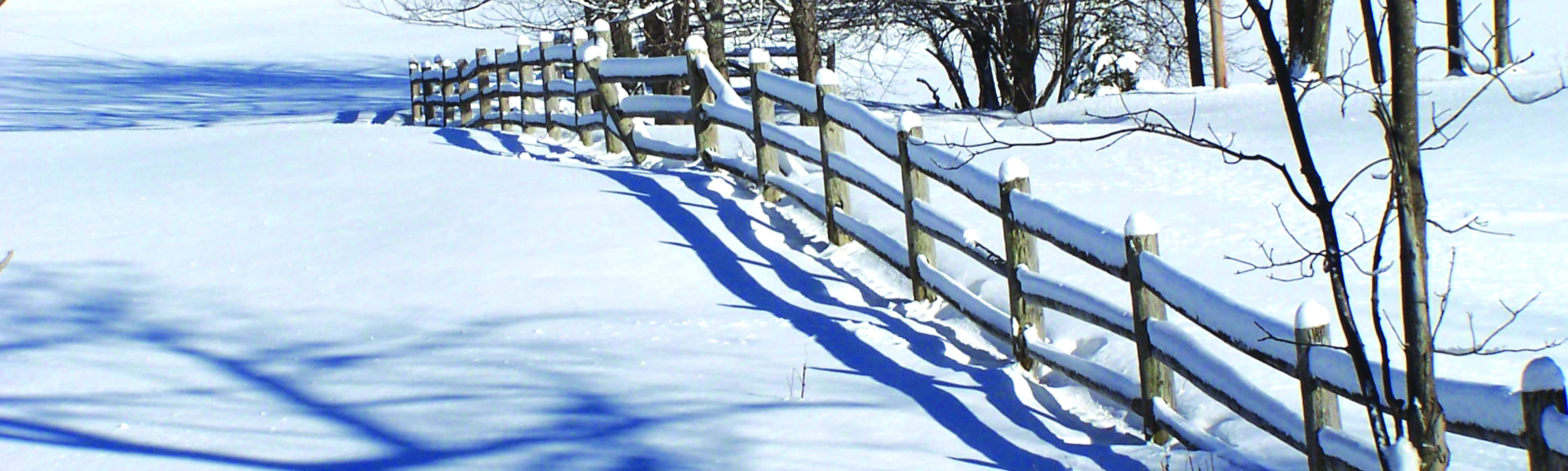 banner-winter-fence